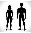 Silhouettes of man and woman in black color vector image vector image