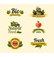 Set of vintage style elements for labels badges vector image