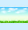summer landscape background green natural grass vector image