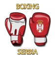 Boxing gloves-Serbia vector image