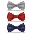 bow tie 03 vector image
