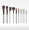 makeup brushes vector image