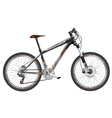 bicycle hardtail vector image