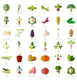 Set of vegetable flat icons vector image