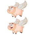 Flying Pig vector image vector image