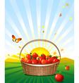 apple basket vector image