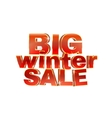 Winter sale words 3d red phrase vector image