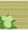 spa leaves and lime vector image