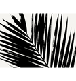 Palm Leaf Poster Design vector image