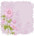 Holiday background with mallow flowers vector image
