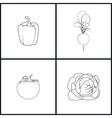 Icons Pepper RadishTomatoesCabbage vector image