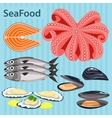 Set sea food ingredients vector image
