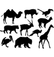 wild animal silhouettes vector image