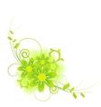 Bunch of beautiful summer flowers vector image vector image
