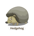 Forest animal hedgehog cartoon vector image