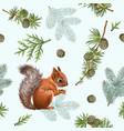 winter squirrel pattern vector image