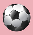 Soccer ball on pink vector image