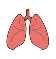 lungs cartoon icon image vector image