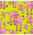 Strange pink pig vector image