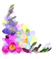 Greeting background with freesia flowers vector image vector image