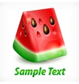 Watermelon on white text vector image