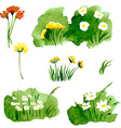 Floral Summer Background with Grass and Flowers vector image