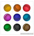 Set of Cricket Ball on White Background vector image vector image