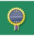 Badge Sticker Guarantee Design Flat vector image