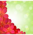Pink Frangipani Frame With Bokeh vector image