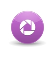 Picasa icon simple style vector image