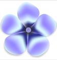 Blue gentle flower natural vector image