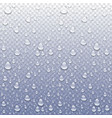 photo realistic image of raindrops or vapor vector image