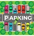 Parking Top View vector image