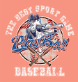 PlayBall baseball crackpaint vector image