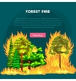 Forest Fire fire in forest landscape damage vector image