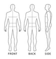 fashion body full length vector image