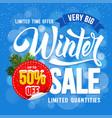 Winter sale advertise design vector image
