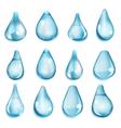 Opaque light blue drops vector image vector image