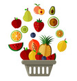 basket of fruit vector image