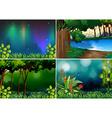 Forest scene vector image