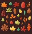 autumn leaf autumnal leaves falling from vector image