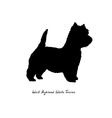 Black silhouette of dog West Highland White Terrie vector image