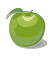 green apple vector image