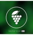 Label logo design winery wine grape premium vector image