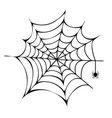 spider building his net icon vector image