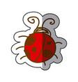 ladybug icon stock image vector image