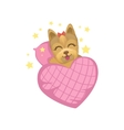 Puppy In Bed With Heart Shape Blanket vector image