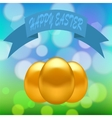 Gold Easter Eggs vector image