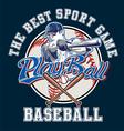 PlayBall baseball vector image