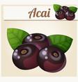 acai berries cartoon icon vector image